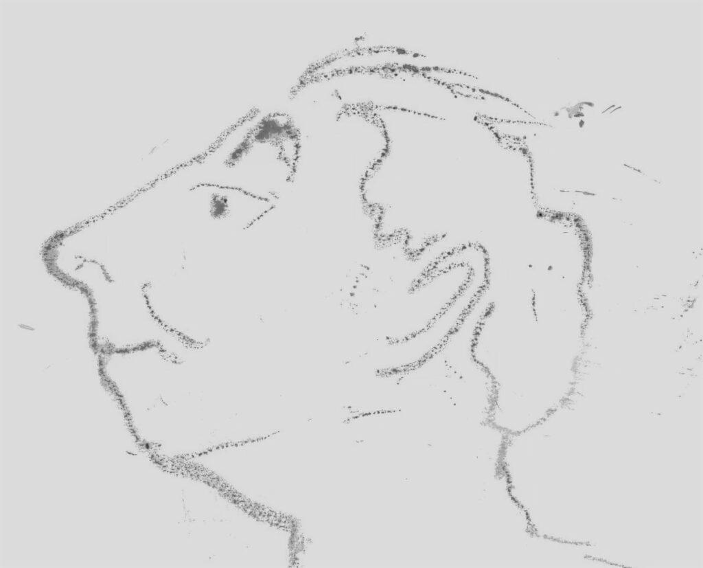 Brúnólfur